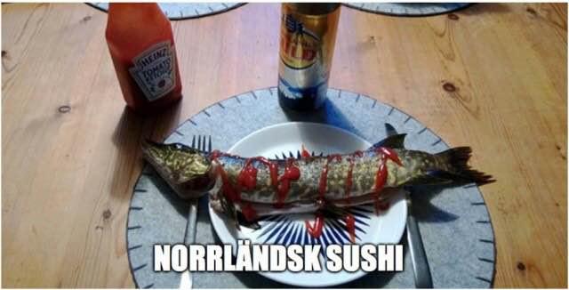 norrlandsshushi