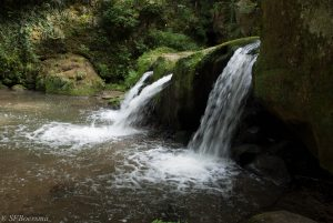The waterfall in the Muellerthal in Luxembourg